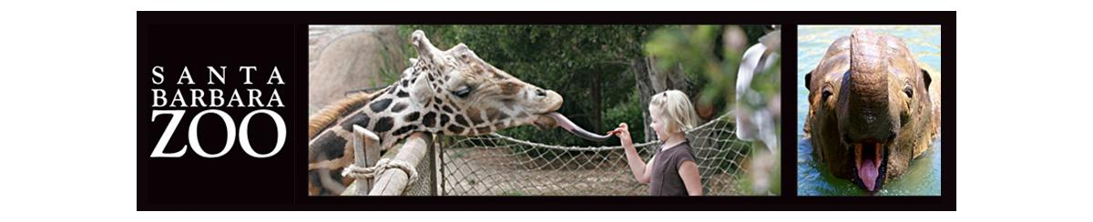 How AcuRite Helps Animals and Visitors of the Santa Barbara Zoo