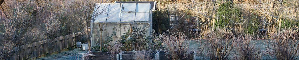 How to Prep for Winter Gardening