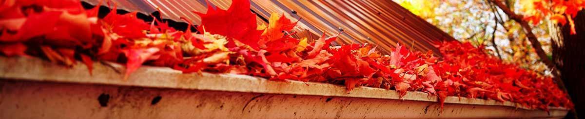 Leaves overflowing in a gutter
