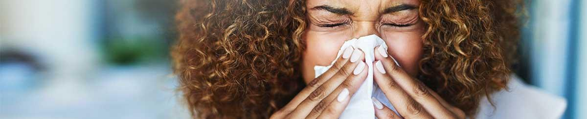 Control Air Quality Allergies
