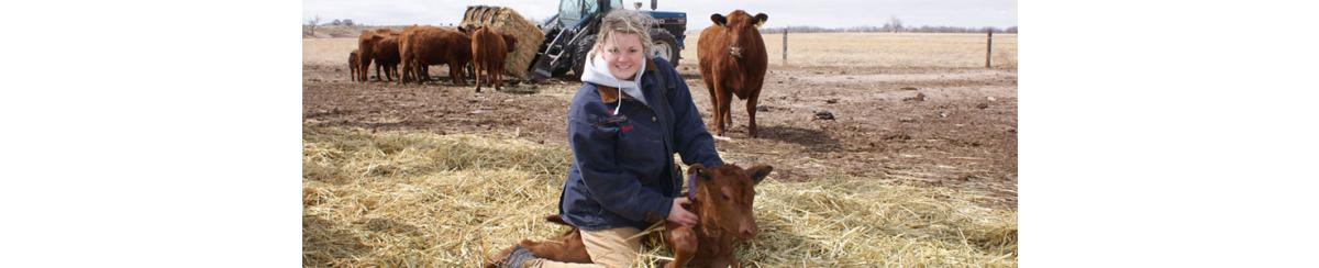 AcuRite Helps Cattle Ranchers Manage a Healthy Herd