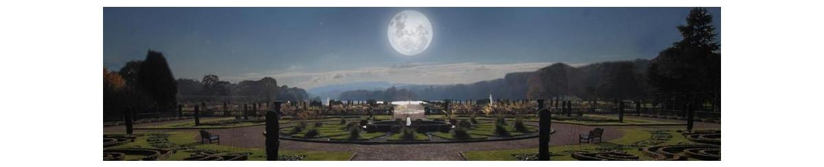 Moonstruck: The lunar cycle's effect on gardening