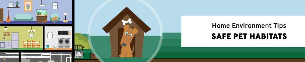 Home and yard illustration with callout to dog outside in front of doghouse