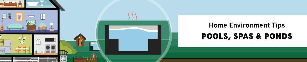 Pools and Hot Tubs: Monitoring Temperature & Preventing Frozen Pipes