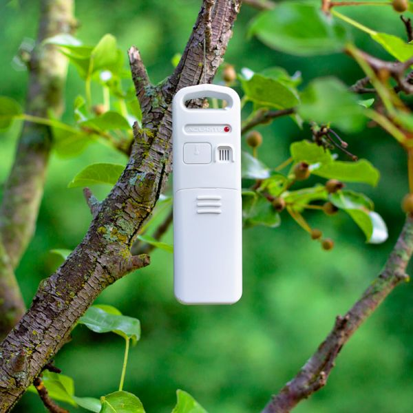 Temperature and Humidity Sensor hanging in a bush - AcuRite Weather Monitoring Devices