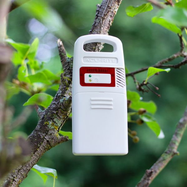 Lightning Detector for Weather Station with Rain Gauge and Lightning Detector Hanging in a Tree – AcuRite Weather