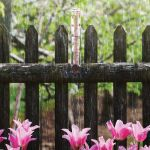 5-inch Glass Rain Gauge mounted on a fence post in the rain - AcuRite Weather Monitoring Devices