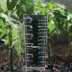 Easy-Read Magnifying Rain Gauge in a garden - AcuRite Weather Monitoring Devices