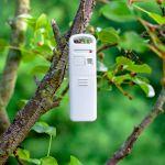 Acurite outdoor temperature sensor hanging in a tree