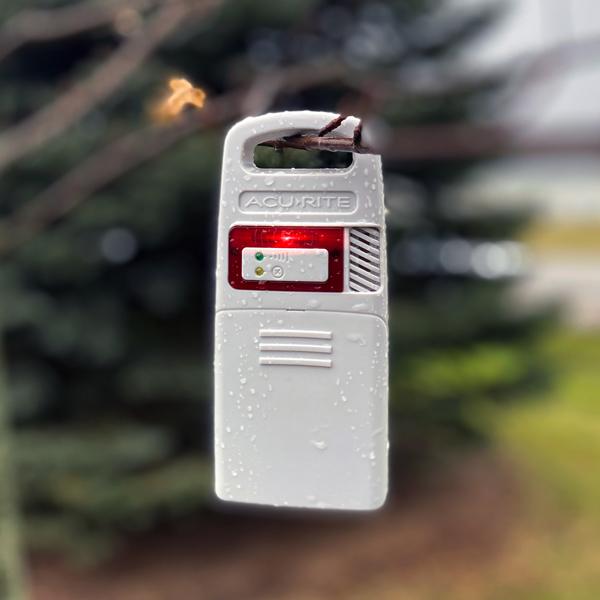 Sensor on Tree