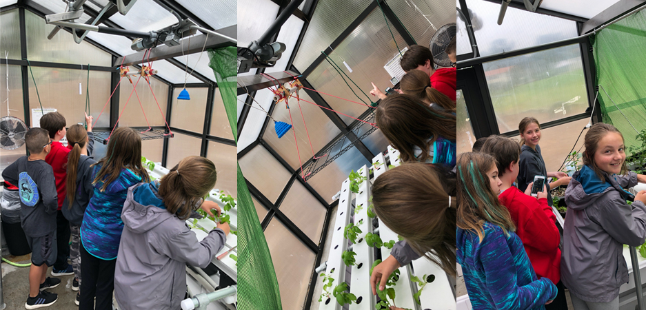 Students in greenhouse using Acurite Sensors