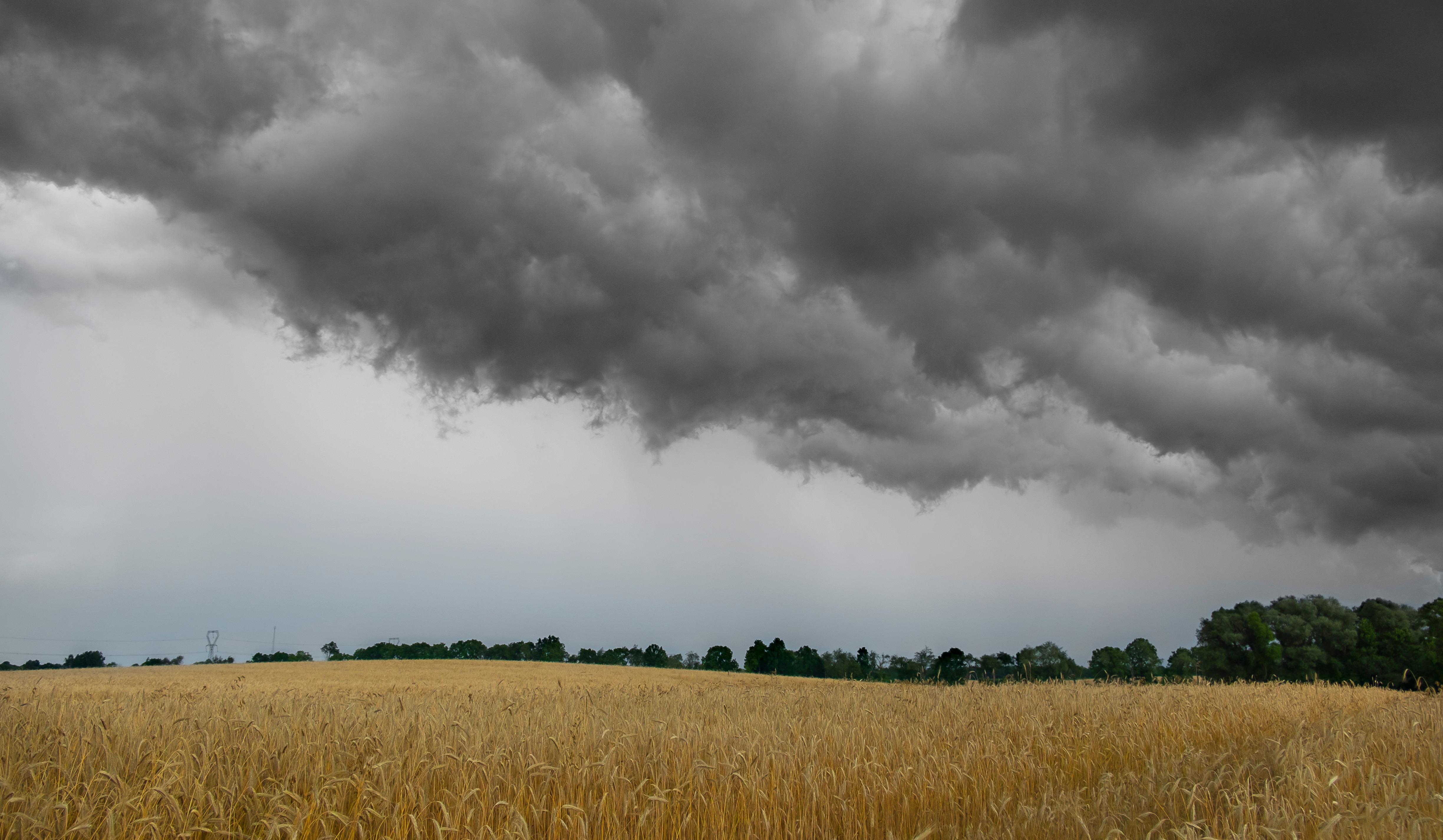 Storm Clouds over a field