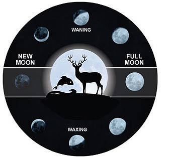 cool hunting gadgets and fishing gadgets - moon phase