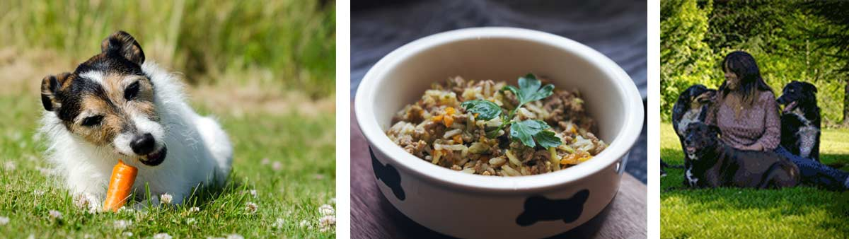 How acurite helps dog nutrition blogger make homemade dog food acurite his 1993 book give your dog a bone argues that replicating a diet consumed by animals in the wild can lead to healthier happier pets forumfinder Image collections