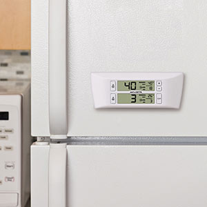 Refrigerator food thermometer
