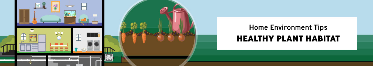 Healthy Plant Habitat
