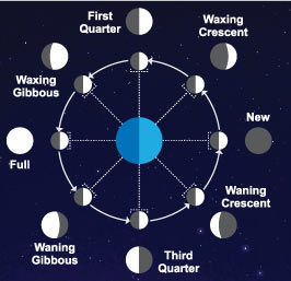 Moon Phase Weather Stations