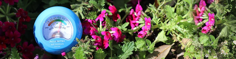 Guide: Soil Moisture Recommendations for Flowers, Plants and Vegetables