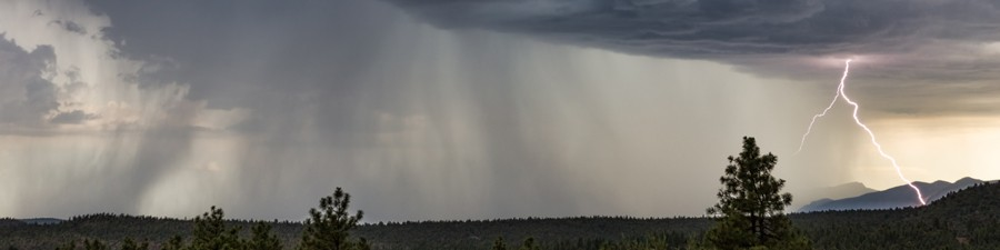 How Do Thunderstorms Develop?
