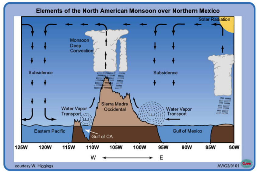 Elements of the North American Monsoon over Northern Mexico