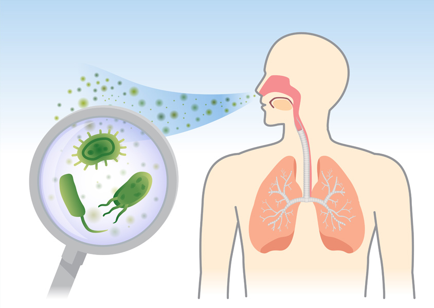 Particles being inhaled into the respiratory system of the human body